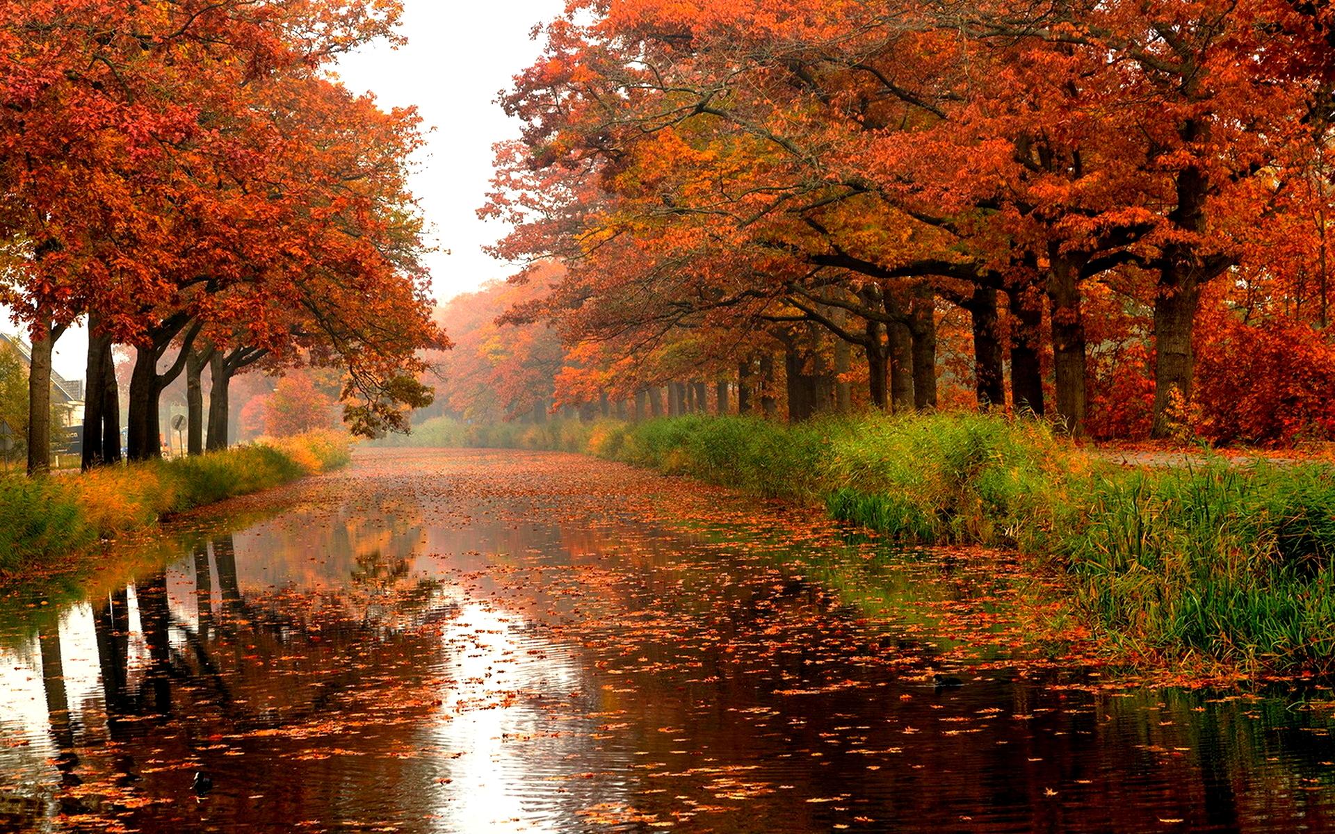 Fall Is The Best Season Neogaf