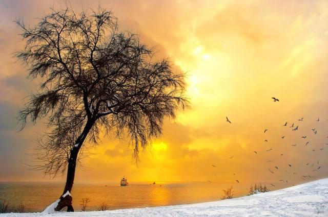 ŞÜKRÜ ERBAŞ YALNIZLIK HECELERİ 43  ALP CEM TURKEY