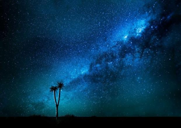 BEJAN MATUR GÖKYÜZÜNDEN ÖNCE               Quiver Tree Milky Way      Namibia