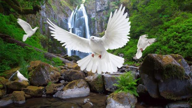 NURİ CAN  BİR ÇOCUK AĞLADI   BEHÇET AYSAN AŞK İÇİN PRELÜDLER 3 VE 4