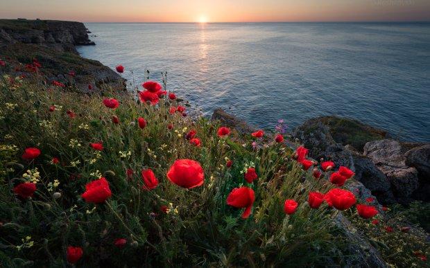 BEJAN MATUR TAŞIN SÜRÜP GİDEN UĞULTUSU    tengerparti-naplemente-pipacsok