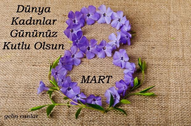 8 MART 17 BLOG İÇİN