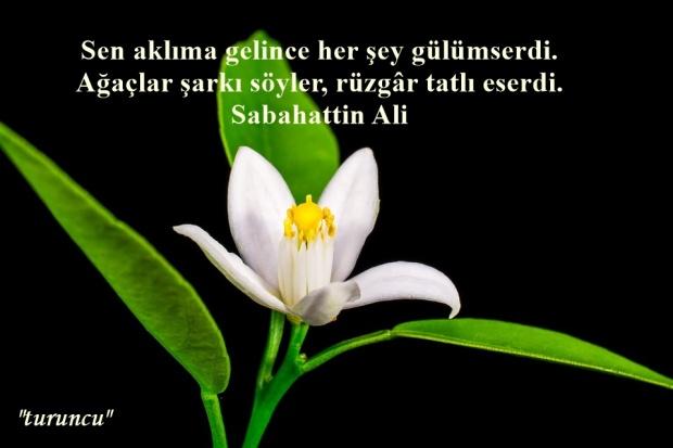 SABAHATTİN ALİ (2)