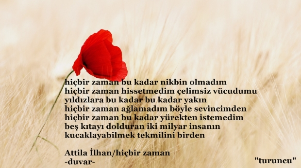 Attila Ilhan Gelin Canlar