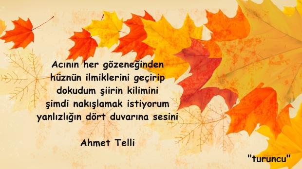 AHMET TELLİ