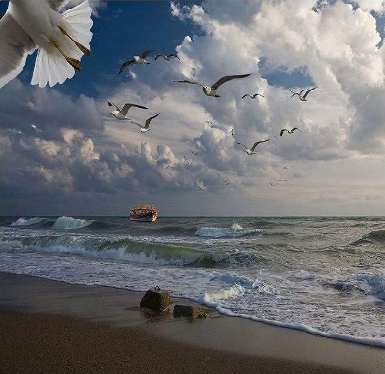 MELİSA GÜRPINAR ADA ŞİİRLERİ 21 by Aleetet