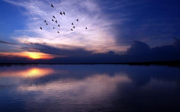 PABLO NERUDA YİRMİ AŞK ŞİİRİ 16