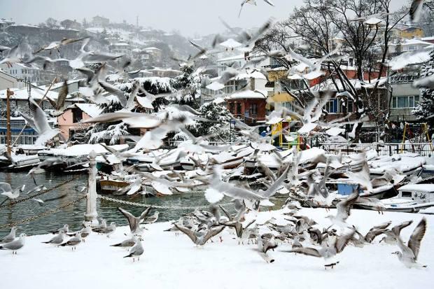 ORUÇ ARUOBA BOĞAZDA KIŞ Sarıyer_in Büyükdere semtinde de manzaranın ayrılmaz