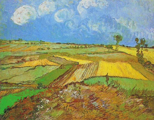 NECATİ CUMALI BAŞAKLAR AGEBE Vincent_van_Gogh_-_Wheat_Fields_after_the_Rain_(1890)