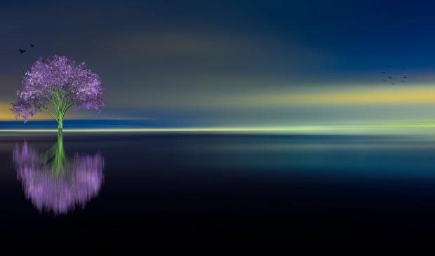 Gökyüzü Maviliğinden Soyunuyor - Ahmet Erhan