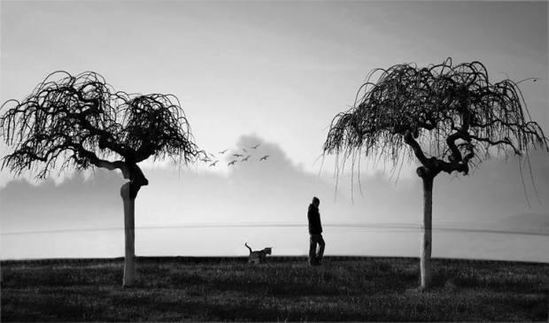 HAYDAR ERGÜLEN GİDEN © Şule Gürler