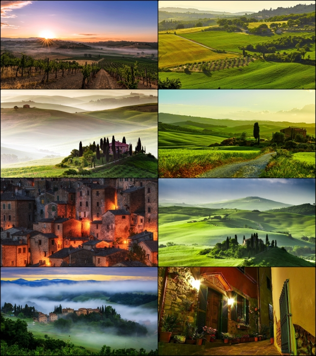 italiia-toskana-polia-plantatsii-vinogradniki-tuman-utro-ras-tile