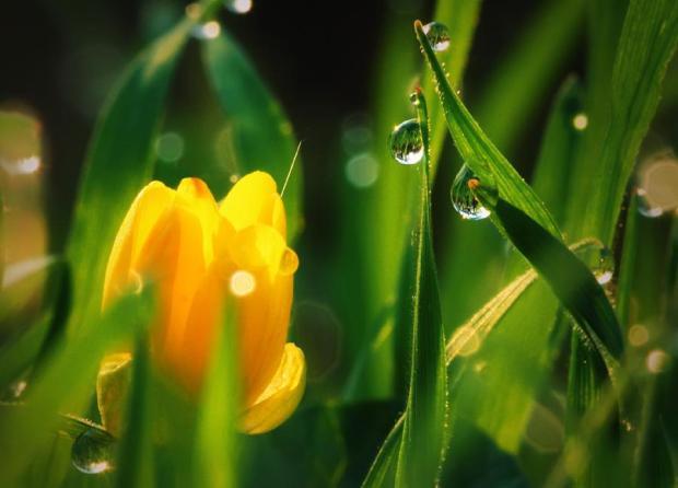 Sevdana Hüzünleri Katık Yapma -Demet Duyuler Doğan